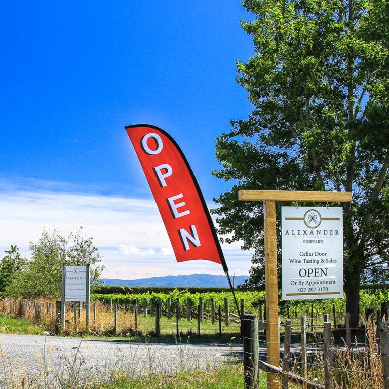 vineyard-open